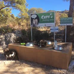 Pefkos feeding station